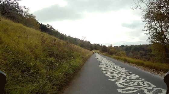 Indoor cycling training video of Box Hill and Ranmore Common