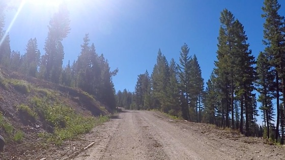 Indoor cycling training video of Butler Creek Gravel Ride