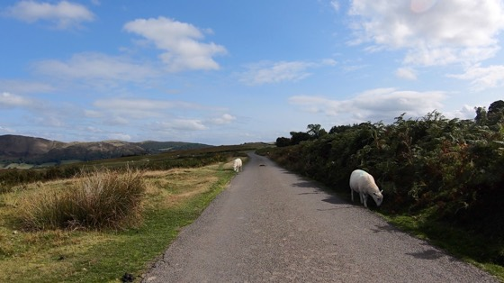 The Burway and Long Mynd